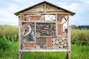 Insektenhotel - Beitrag zur Nachhaltigkeit